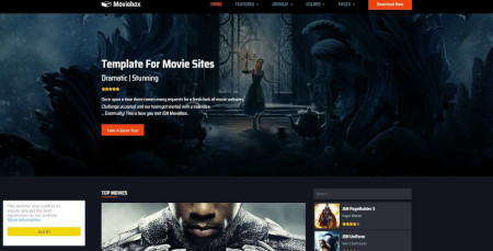 LMS MovieBox Website Design