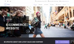 LMS One E-Commerce Web Design